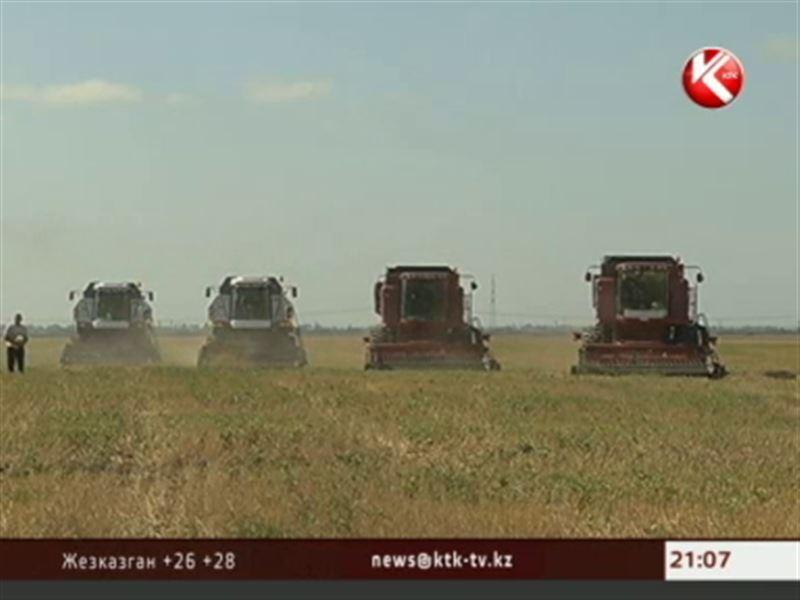 Министр сельского хозяйства пообещал, что стоимость хлеба не повысится