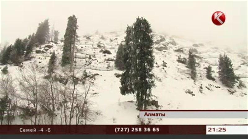 На спасение гор алматинцы собрали 150 миллионов