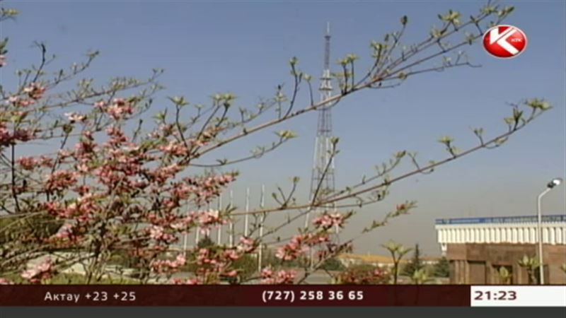 На праздники в Казахстане будет тепло