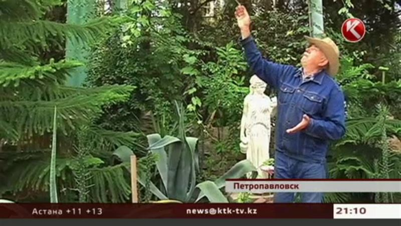 В Петропавловске самосожжением грозит владелец ботанического сада