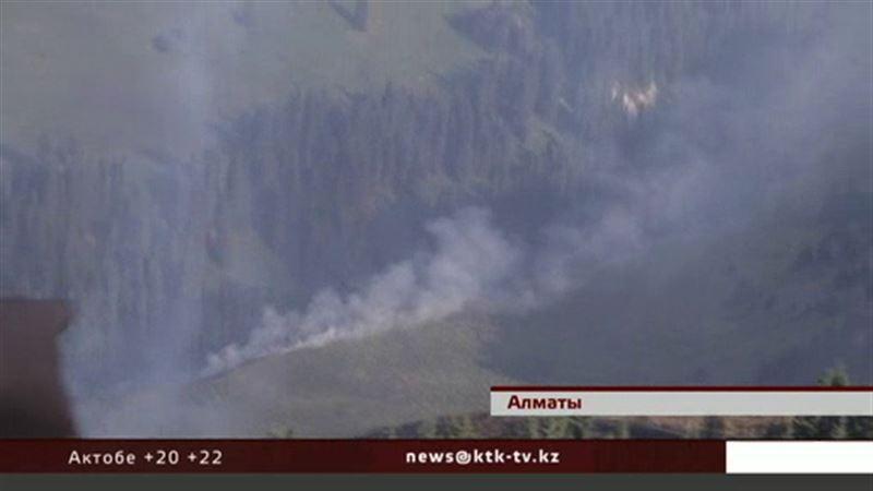 В горах близ Алматы сгорело 8 гектаров сухостоя