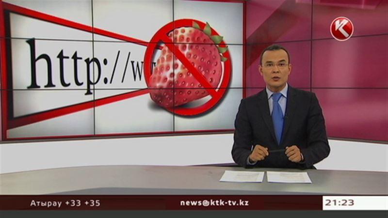 Казахстанских пользователей лишили доступа к порносайтам
