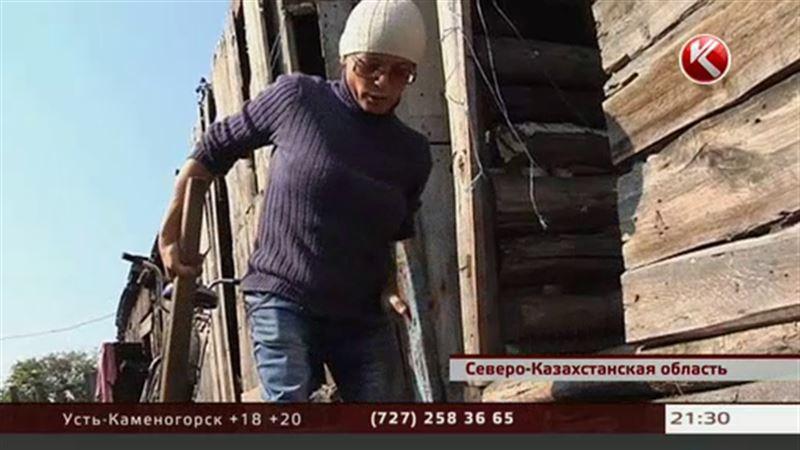 Самую маленькую женщину Петропавловска не хотят брать на работу