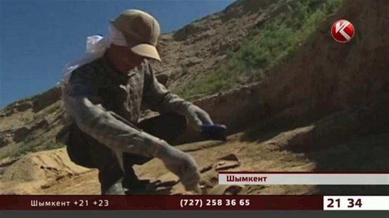 Казахстанские археологи: Шымкент – самый древний город страны