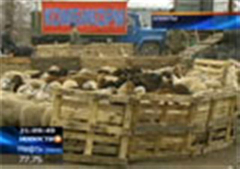В Алматы привычного предпраздничного ажиотажа на рынках не наблюдается