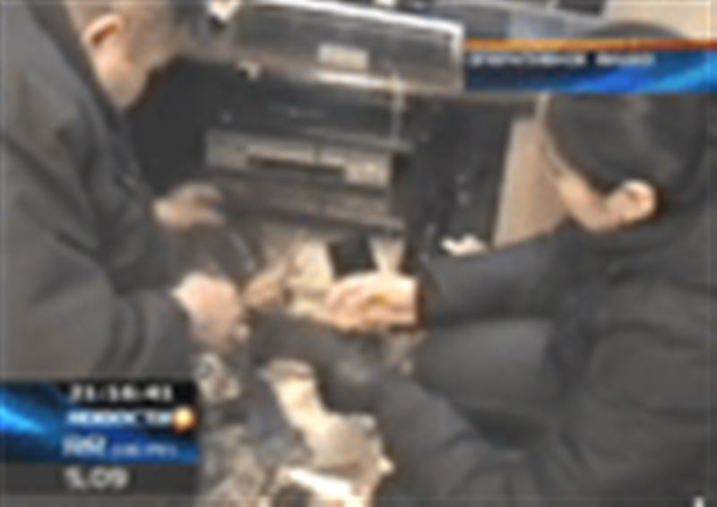 Жительнице Павлодара предъявлено обвинение в содержании наркопритона и наркоторговле