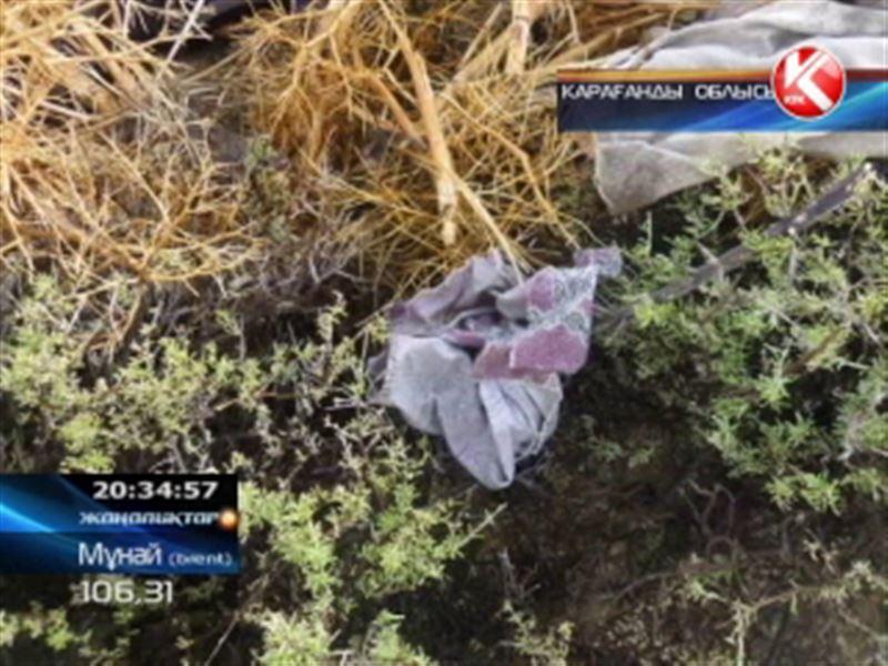 Қарағанды облысында адасып кеткен екі адамның өлі денелері табылды