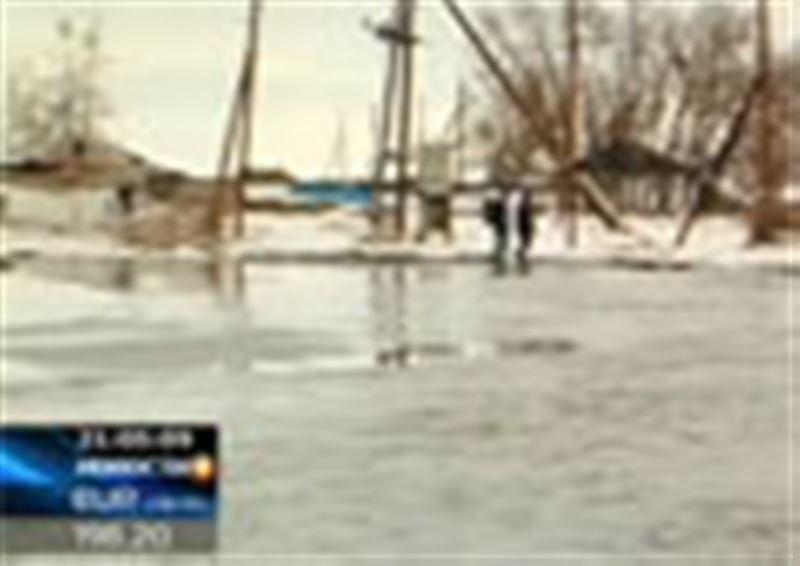 Компенсации за падший скот жителям затопленных районов Восточного Казахстан будут платить только после предъявления туш