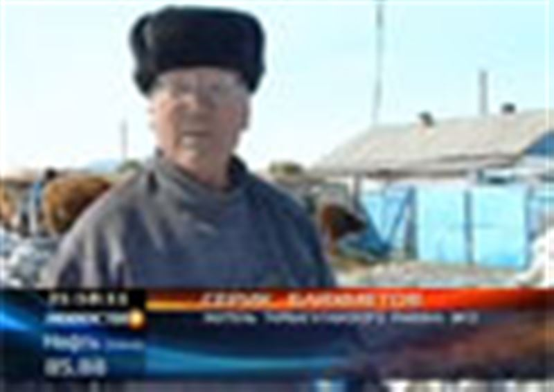 В пострадавшем от наводнения Тарбагатайском районе Восточно-Казахстанской области чиновники закончили подсчитывать ущерб