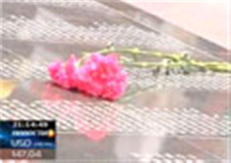 В Шымкенте открыт крупнейший в стране Мемориал Славы