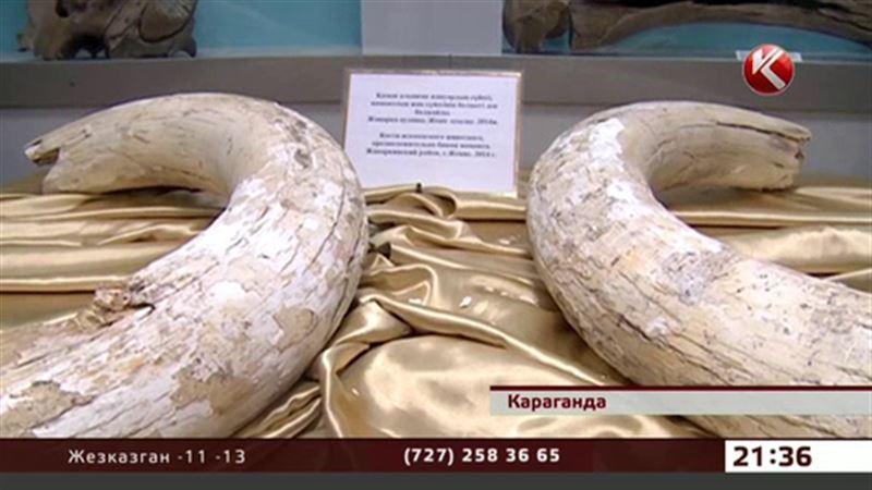 Карагандинские строители совершили открытие в археологии