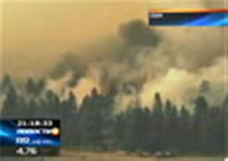 Мощные лесные пожары бушуют в Аризоне