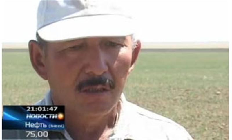 Западноказахстанские фермеры подсчитывают убытки, на грани банкротства десятки крестьянских хозяйств
