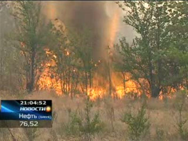 В Западном Казахстане недалеко от Уральска бушует степной пожар