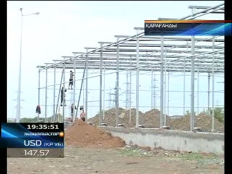 В Караганде намерены выращивать золотые огурцы. В разгар строительства тепличного комплекса стоимость проекта резко возросла