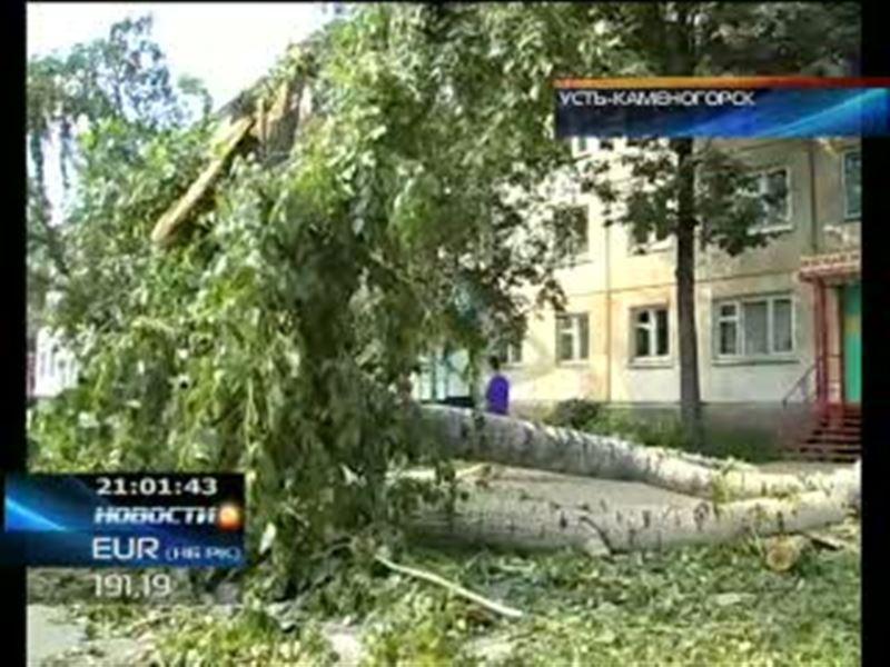 На Восточно-Казахстанскую область обрушился ураган. Повалены десятки деревьев, повреждены жилые дома и автомобили