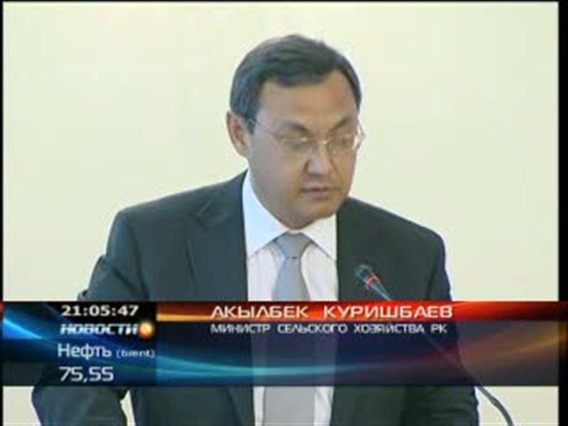 Ценовой сговор на юге Казахстана. Агентство по защите конкуренции и Минсельхоз выявили необоснованное завышение цен на хлеб
