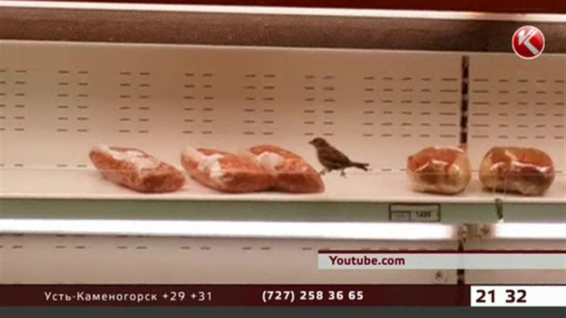 Воробьи разоряют карагандинский супермаркет