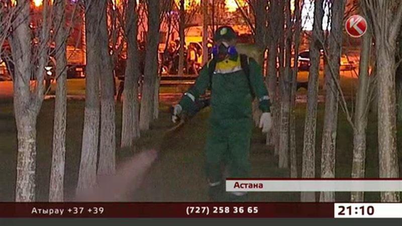 Комары могут подпортить имидж столицы во время вставки ЭКСПО