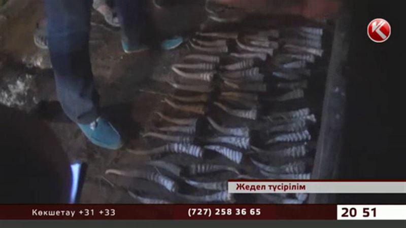 Қостанай облысында өлген киіктердің мүйізін сатпақ болған волонтер ұсталды
