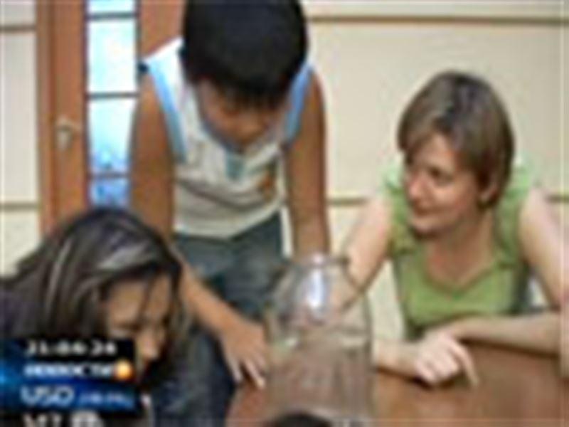 Во время купания в одном из озер ученик пятого класса выловил из воды настоящих тропических медуз