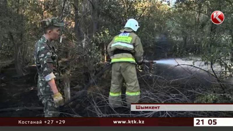Пожар полыхал неподалеку от шымкентской резиденции Президента