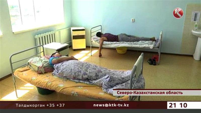 У детей, отдыхавших в лагерях СКО, диагностировали сальмонеллез и дизентерию