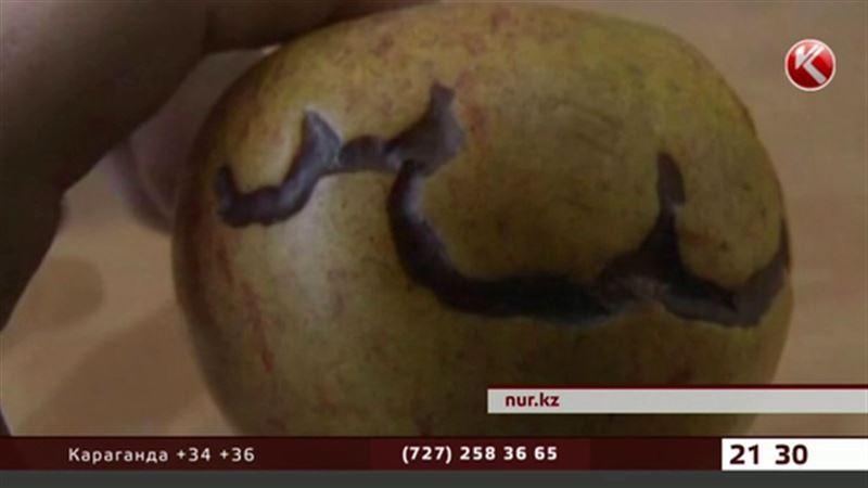 В Актау на яблоках проступила арабская вязь