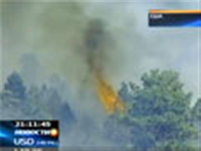 В Колорадо (США) из-за лесных пожаров эвакуируют людей