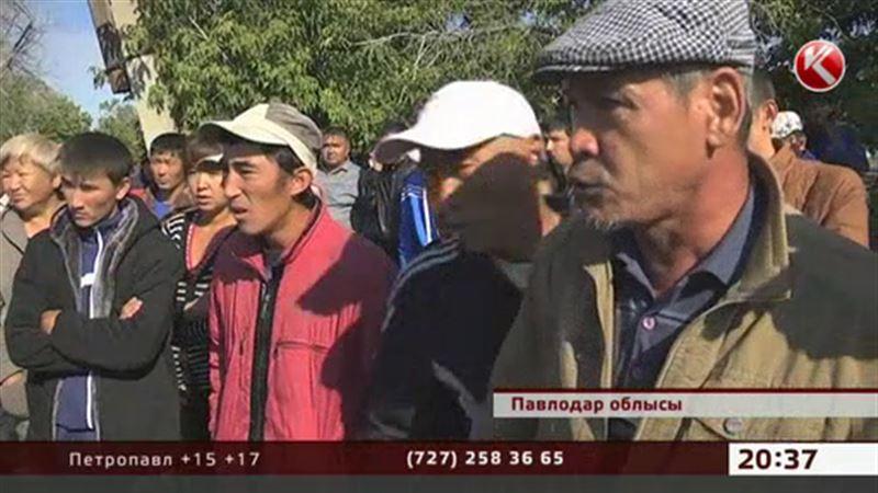 Павлодар: Қымбат бағалы су жәндігі үшін жұрт қырылысып қалды