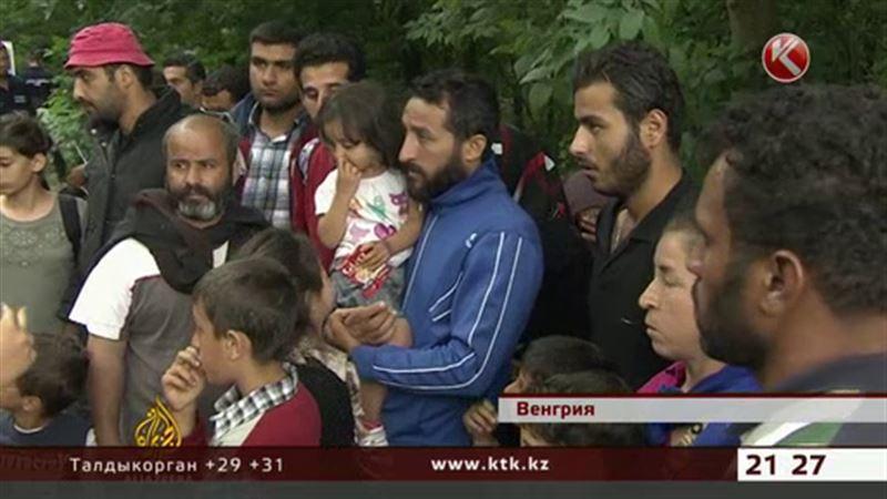 Европа рассорилась из-за мигрантов
