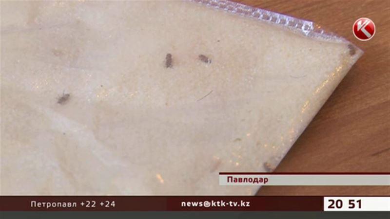Павлодардағы түрмеде бақылаушылар ботқа пісіретін ұнтақ арасынан құрт тауып алған