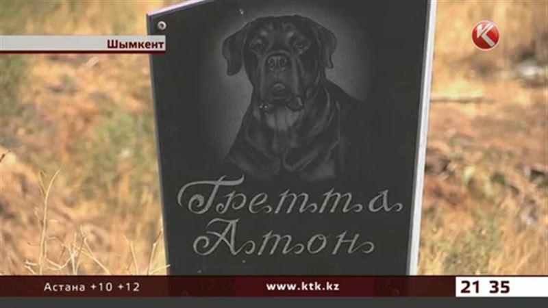 В Шымкенте могут легализовать кладбище для домашних питомцев