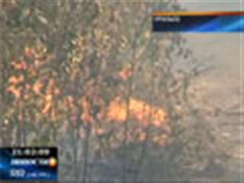 Пожары по-прежнему полыхают на западе страны, огонь вновь подбирается к населенным пунктам