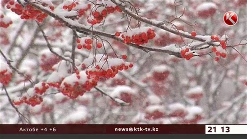 Жители юга увидят первый снег