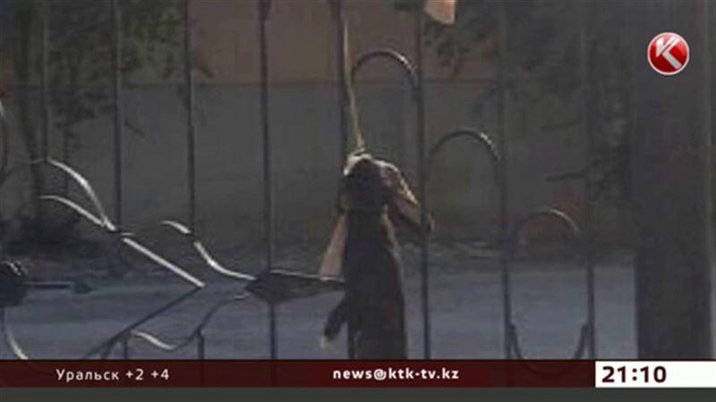 В руки жестоких актауских детей теперь попал кролик