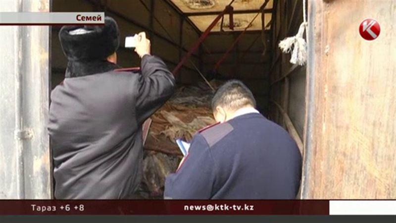 В Семее задержали грузовик с прицепом, из которого сочилась кровь