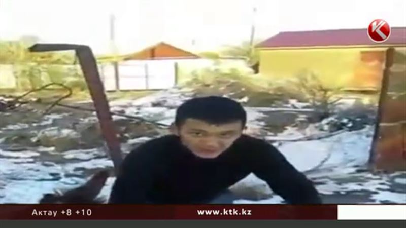 Обидчика осла задержали полицейские в Алматинской области