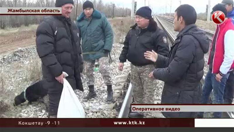 В Жамбылской области задержали мужчину с мешком марихуаны