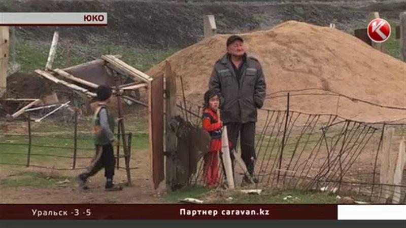 Сельчанин из ЮКО посадил баранов всего аула на жесткую диету