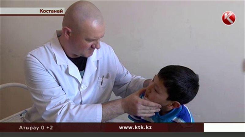 «Челюсти» по-костанайски: два школьника пострадали от овчарки