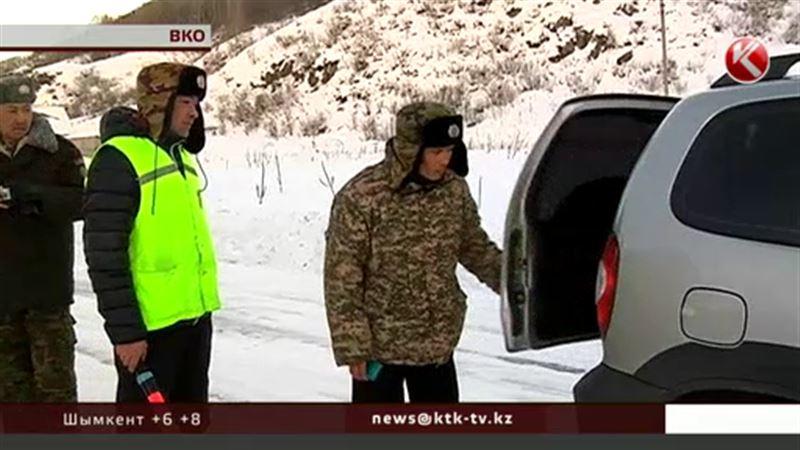 В Восточном Казахстане объявили охоту на лесорубов