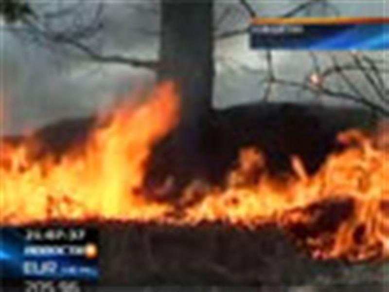 Кокшетау накрыл смог от лесных и степных пожаров