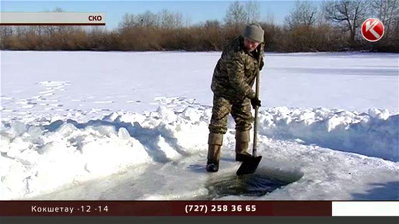В Северо-Казахстанской области рыбе делают искусственное дыхание