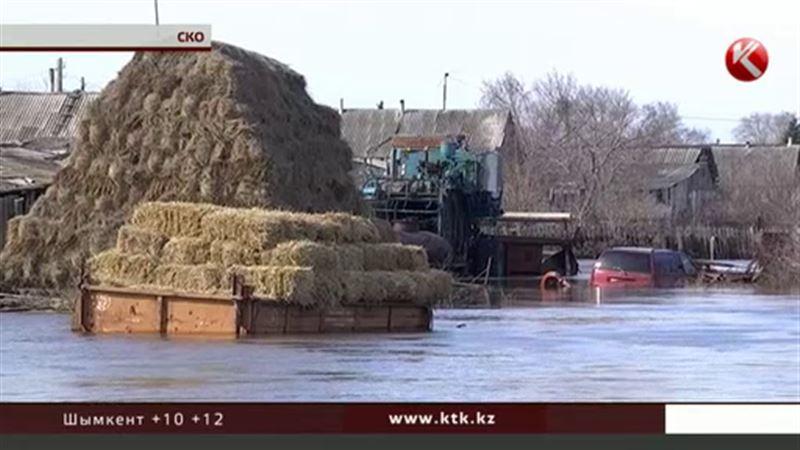 На севере страны ушло под воду село Донецкое
