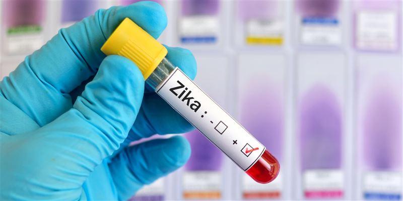 Как уберечься от опасного вируса Зика?