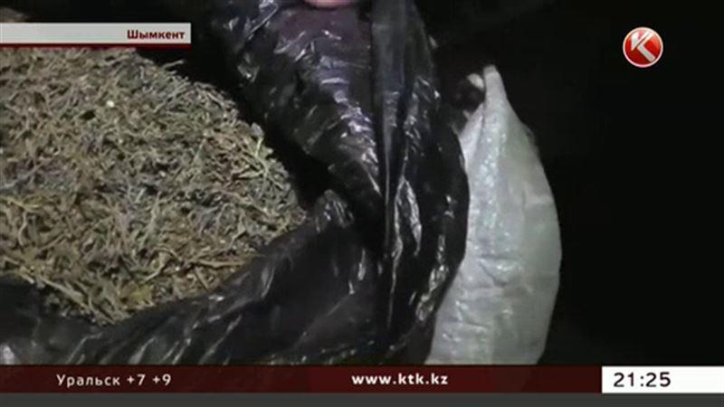 Семейную ОПГ создали южноказахстанские наркоторговцы