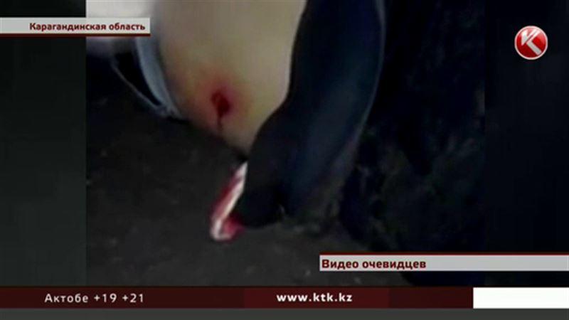 В Карагандинской области мужчина погиб от полицейской пули