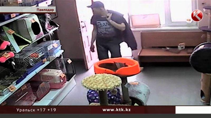 В Павлодаре грабитель обокрал… бездомных животных