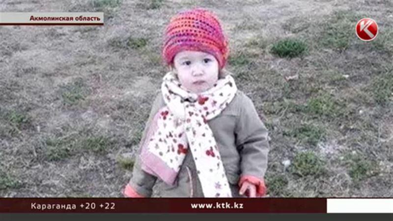 В Акмолинской области вторые сутки разыскивают двухлетнюю девочку